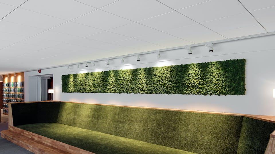 Acoustic ceiling solution: Rockfon Color-all®, 600 x 600 - Rockfon® System T24 A™