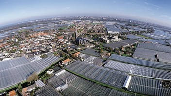 about grodan, innovative and sustainable, stone wool, growing, Precision Growing principles, Air photo of Westland in The Netherlands, grodan