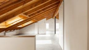 Attic, roof, wood panel, open space, interior