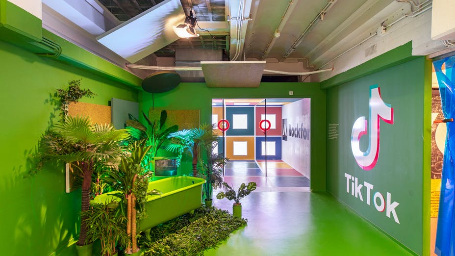 Youseum Instagram Museum in Amsterdam The Netherlands with Rockfon Eclipse and Eclipse wall in Eucalyptus, Sage and Moss colour