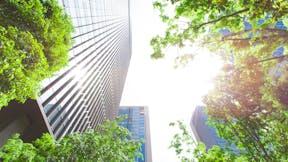 city, buildings, skyscraper, trees, office building