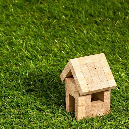 home, green, grass