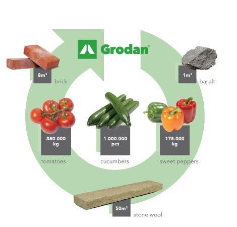 recycling, infographic, cucumbers, tomatos, circle, grodan