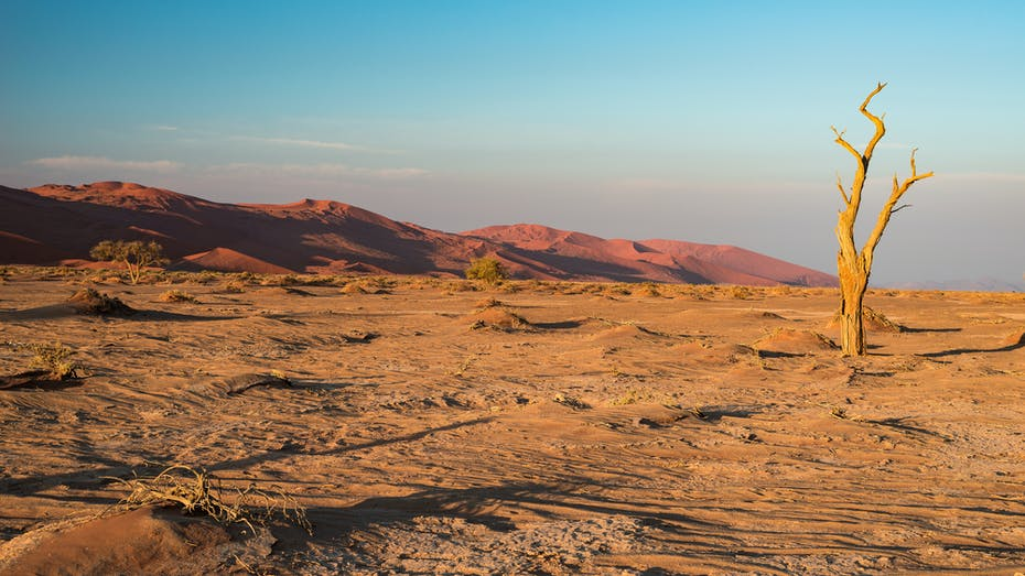 Nature, Desert, Sand