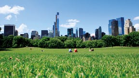 RockWorld imagery,The Big Picture, park, city, greenery