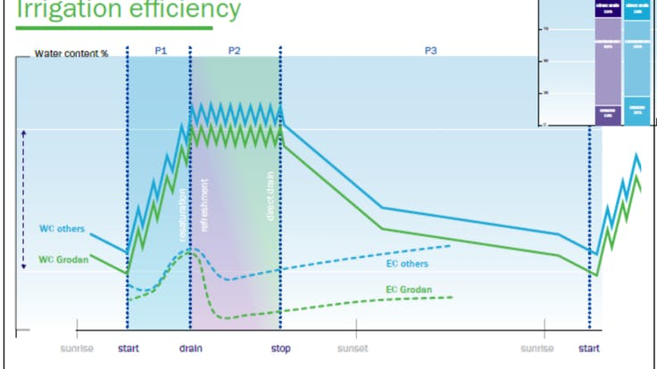 infographic, irrigation efficiency, WC, EC, illustration, NG2.0, technical, substrates