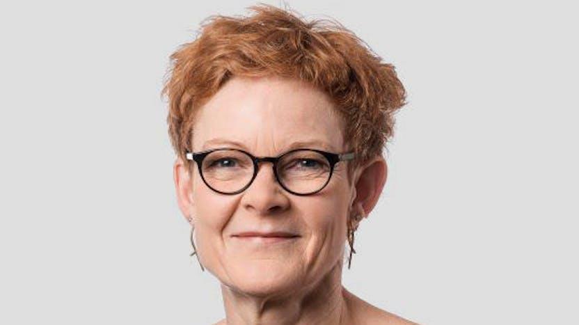Connie Enghus Theisen, Board of Directors