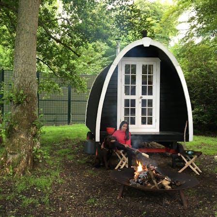 application, nature, campsite, caravan, lapinus