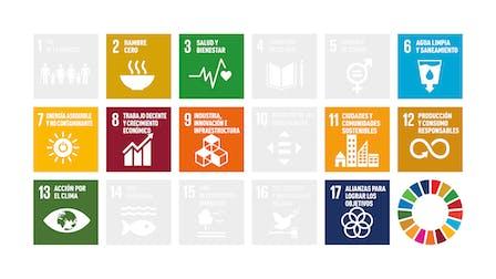 SR20, Sustainability Report 2020, SDGs Sustainability goals - ES Translation  Informe Sostenibilidad 2020 Objetivos sostenibilidad ODS 19x6 1920x1080