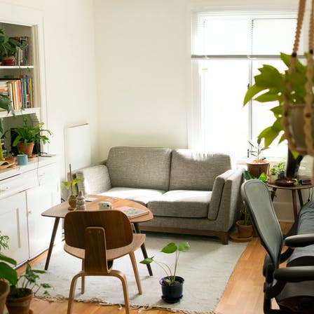 Small, apartment, green