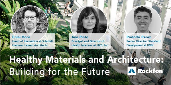 Article, Healthy Materials and Architecture, Building for the Future, Enlai Hooi, Ana Pinto, Rodolfo Perez