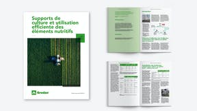 Visual, report, sustainability, FR
