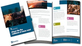 NA, 7 Strengths of Stone, Fire Factsheet, Thumbnail