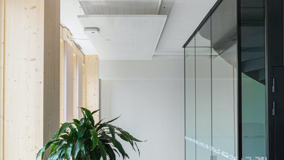 Corridor in office Wood City in Helsinki Finland with Rockfon Blanka in As-edge