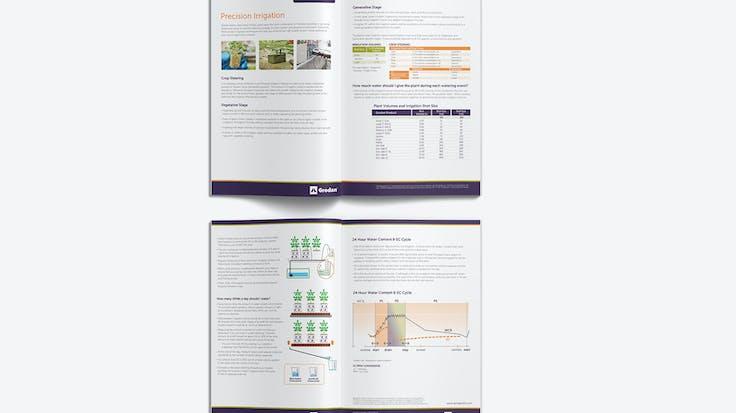 Visual, Report, Grodan 101, Precision Irregation