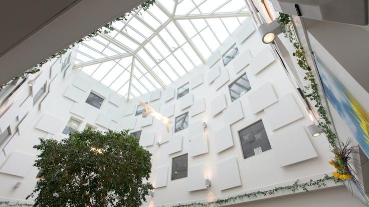 The Netherlands, Silvolde, Woonzorgcentrum De Schuylenburgh Azora, Fleurbaaij Totaalafbouw, Health, Reception, Corridor, Rockfon Eclipse Wall, Be-edge, 1160x1160, white