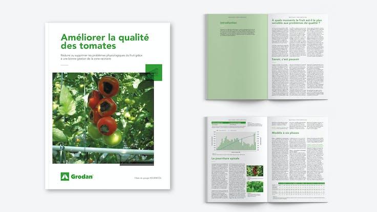 whitepaper, visual, mockup, improving tomato fruit quality, FR