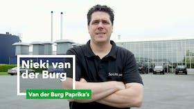 application, Nieki van der Burg, grodan