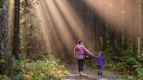 sustainability, mood image, wood, sunlight, mother and child, walking, forest, pathway, unsplash, photo by James Wheeler