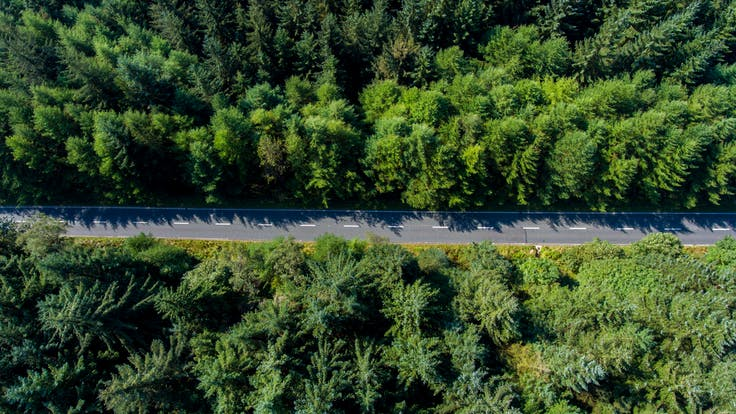 RockWorld imagery, The big picture, road, forest,