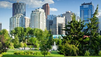 RockWorld imagery, The big picture, buildings, greenery, park, trees, city