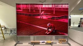 Grodan, press release, NethWork, New York, exposition, horticulture