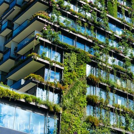 Urban, Greenery, Plants