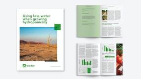 Visual, report, sustainability