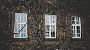 Facade, Plants, Windows, Outer wall