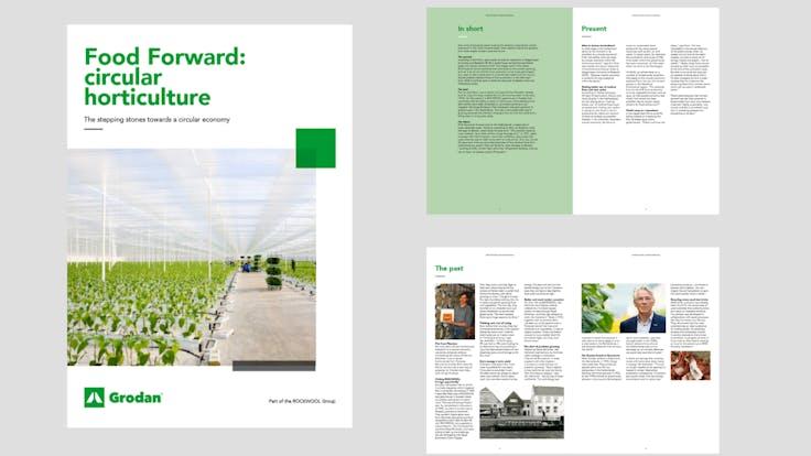 visual, report, whitepaper, Food Forward, circular horticulture, stepping stones, circular economy, Grodan, EN
