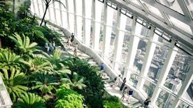 People walking on a staircase in an indoor garden environment at the top floor of a high rise building