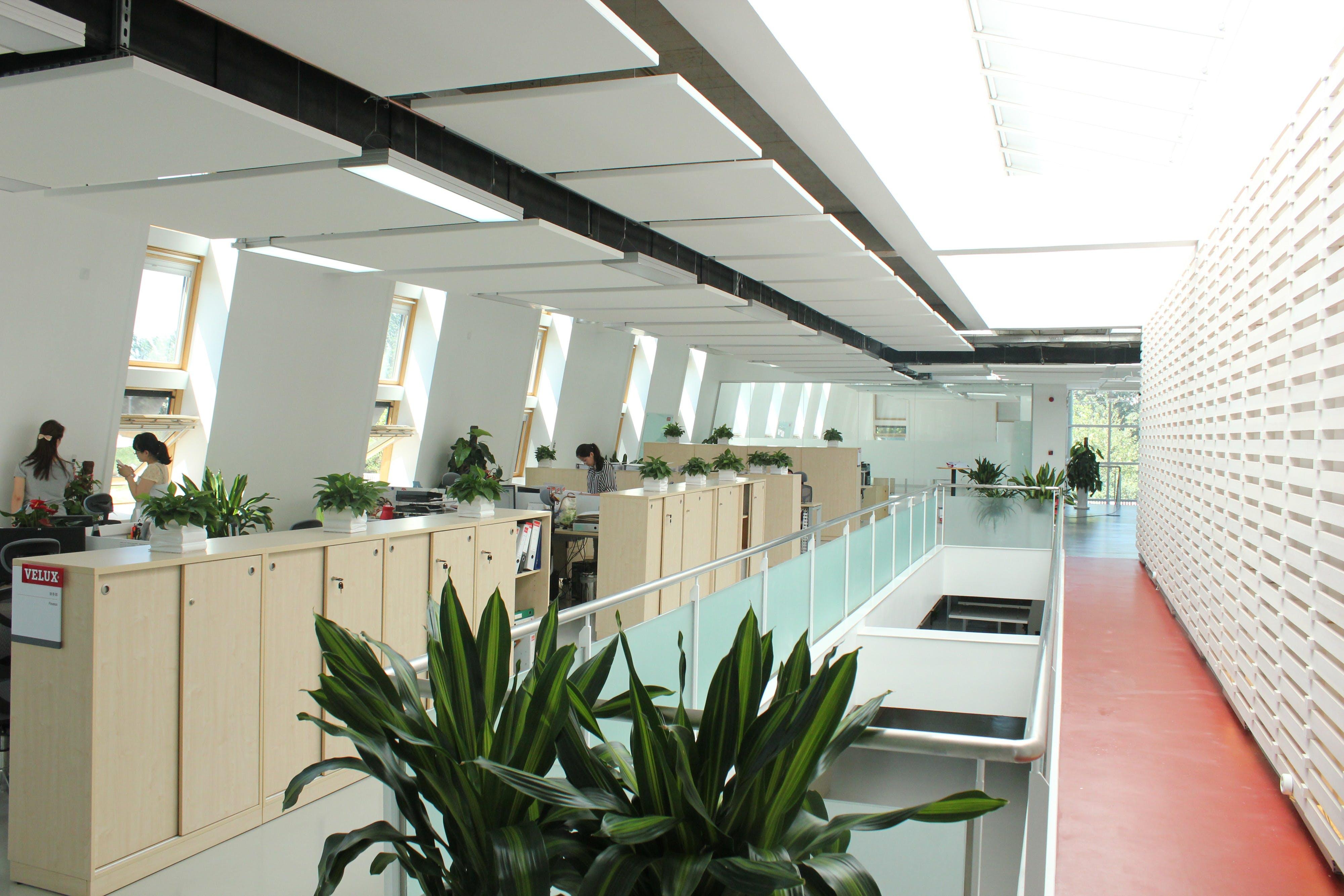 CN Velux Office, Rockfon Eclipse, 2013