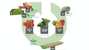 Sustainability circle - France