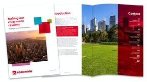Making our cities resilient, guide, RW design