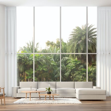 Home, interior, modern, window, high ceiling, palm tree