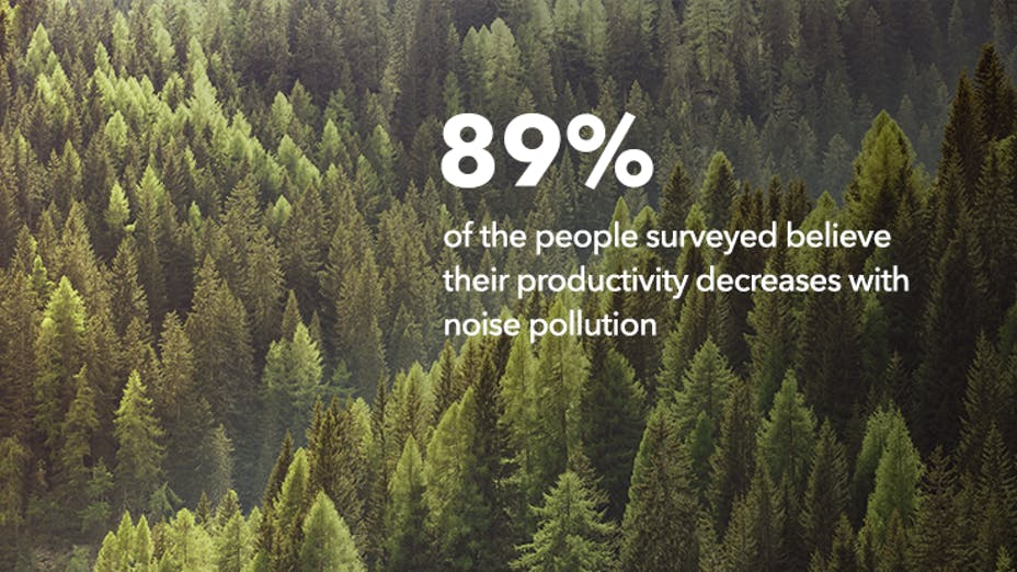 89% of the people surveyed believe their productivity decreases with noise pollution