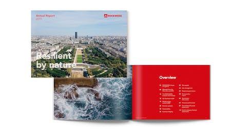 AR 2019, Annual Report 2019, icon