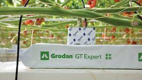 Growing solutions, growth, quality, innovative, development, GT Expert, grodan
